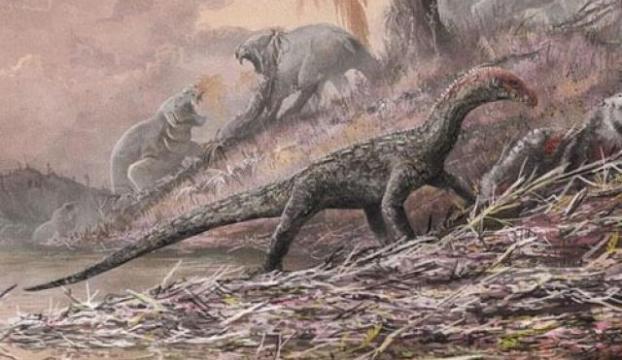 Bilim insanları, Avustralyanın en büyük dinozor türünü keşfetti