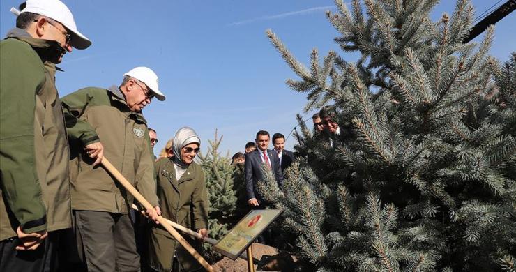 """""""Orman varlığımızı 17 yılda 22,6 milyon hektara çıkardık"""""""