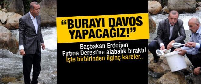 Erdoğan Fırtına Deresi'ne alabalık bıraktı