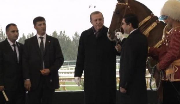 Erdoğana at hediye ettiler