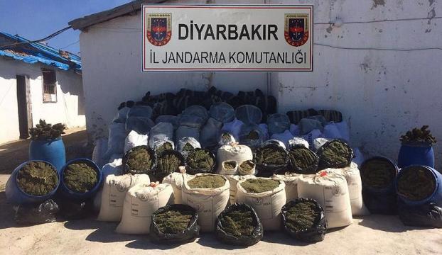 Diyarbakırda 11 günde 1 ton 98 kilogram esrar ele geçirildi