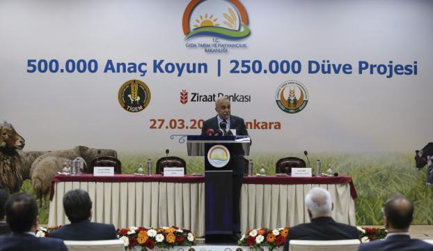 500 Bin Anaç Koyun ve 250 Bin Düve projelerinde imzalar atıldı