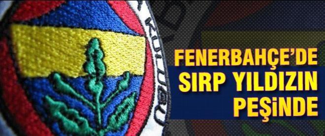 Fenerbahçe Sırp yıldız'ın peşinde