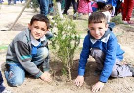 Erzurum 8 milyon ağaçla yeşillenecek