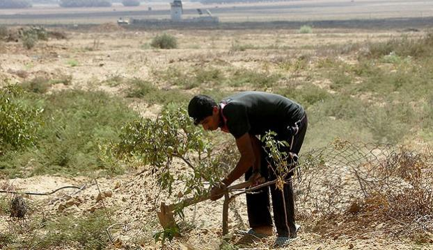İsrail tarım arazilerine ateş açtı