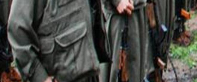 Şırnakta PKKlı 4 terörist teslim oldu