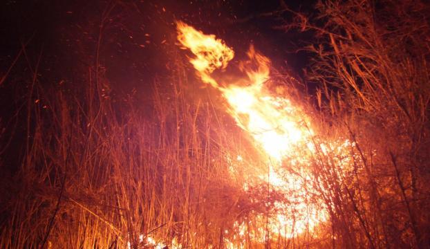 Göksu Deltasında yangın