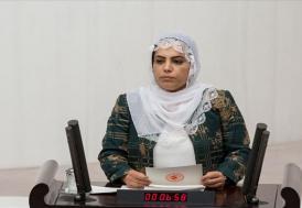 HDP Diyarbakır Milletvekili Remziye Tosun hakkında soruşturma