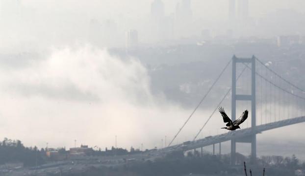 İstanbulda kar yok, sıcaklıklar hafta sonu artacak
