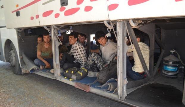 Yolcu otobüsünde 119 kaçak yakalandı