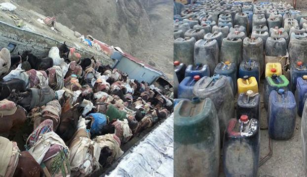 İran sınırında kaçakçılık operasyonu