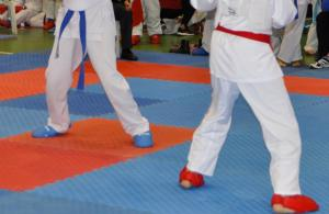 Milli karatecilerden 12 madalya