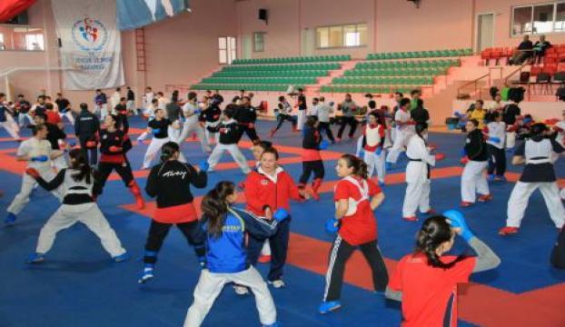 Türkiye Karate Federasyonu sponsor arıyor