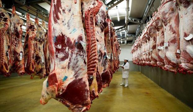 """Et ve et ürünleri üretimi """"mesleki eğitim"""" kapsamına alındı"""