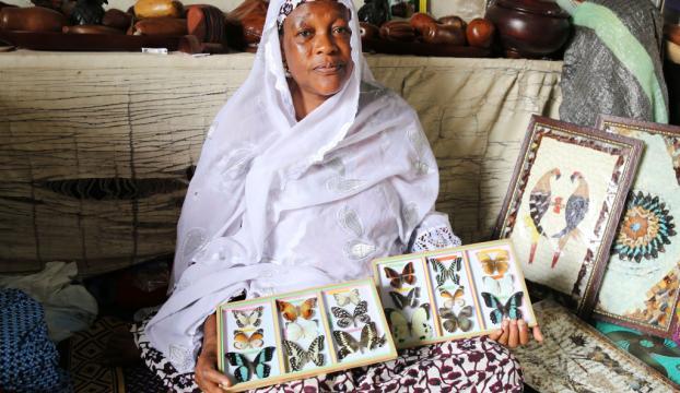 Ölü kelebeklerin kanatlarını sanata dönüştürüyorlar