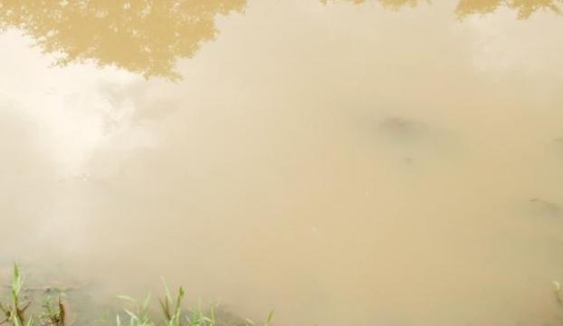 Kirli su katliamı: 50 ölü