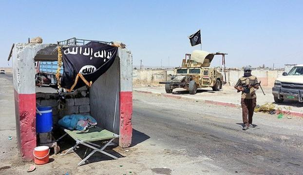 """""""IŞİD Fellucede 150 kadını idam etti"""""""
