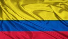 BM'den Kolombiya'ya koka üretimi uyarısı