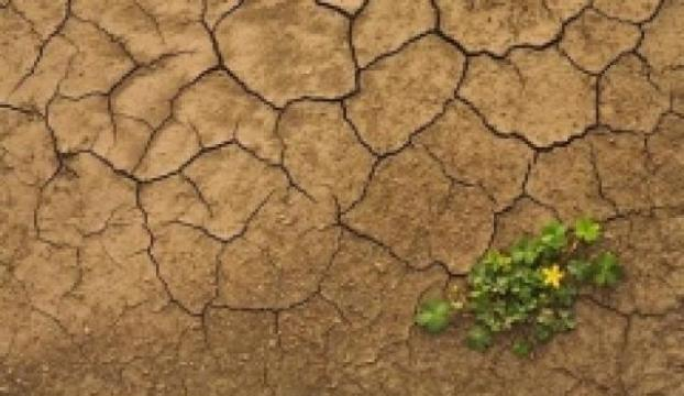 Pakistanda kuraklık