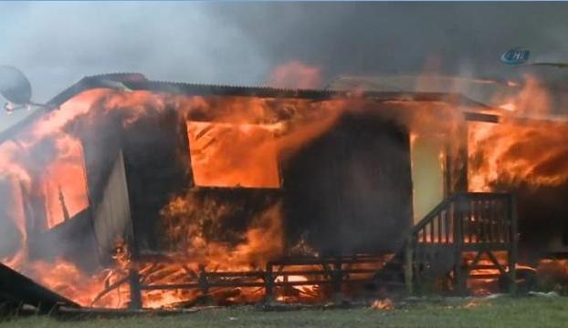 Lavlar evi yok etti
