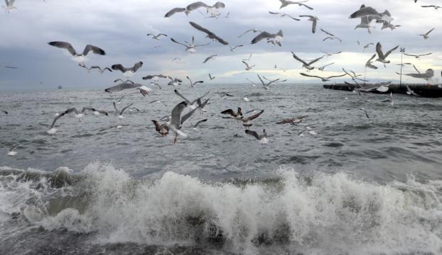 Marmarada sıcaklıklar yükseliyor