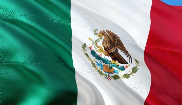 Meksika'da kadın manken yasağı