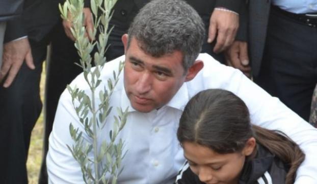 Metin Feyzioğlu zeytin ağacı dikti