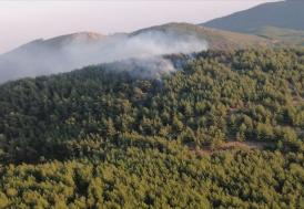 Malatya'da ormanlık alanlarda mola vermek ve piknik yapmak yasaklandı