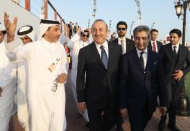 Necati Şaşmaz, Dışişleri Bakanı Çavuşoğlu ile birlikte Katar'da
