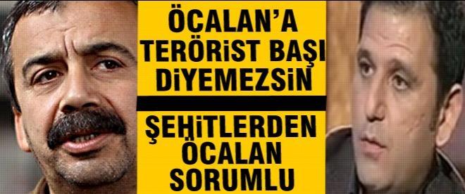 """""""Öcalan'a terörist başı diyemezsiniz"""""""