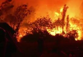 Şili'de büyük yangın!
