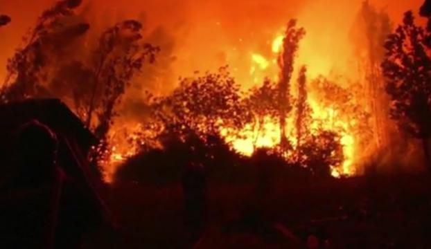 Kaliforniyadaki yangının zararı 3,3 milyar dolar