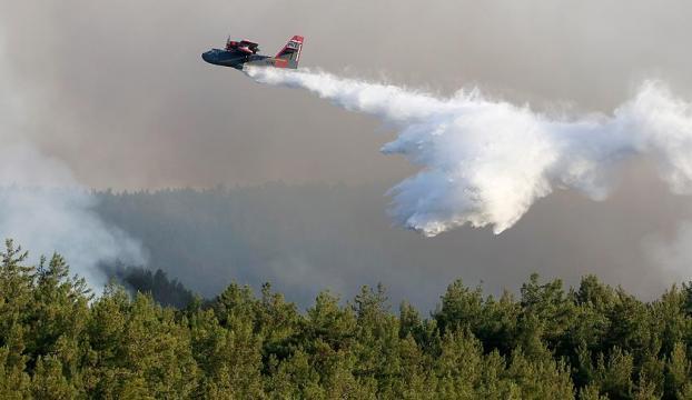 Orman Genel Müdürü Üzmez: Yangının yüzde 70-80ini çevirdik