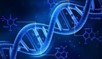 Çinli araştırmacılar iki yeni cüzzam geni değişkeni tespit etti