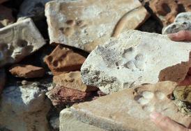 Tarihi Kadıkalesi'nde 8 asırlık pati izleri