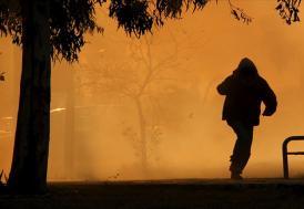 Pendik'deki orman yangınına ilişkin gözaltı