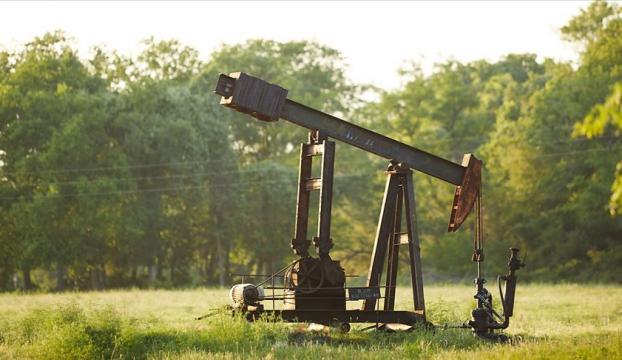 Brent petrolün varili 42,86 dolar
