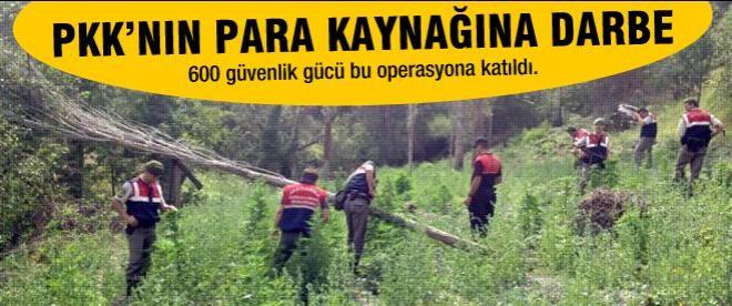 PKK mali kaynağına büyük darbe