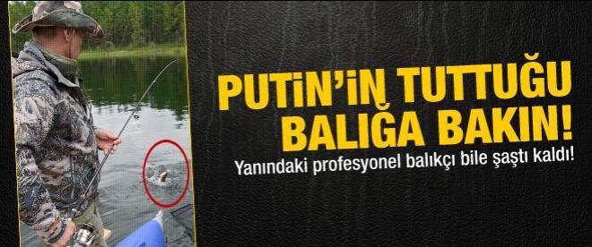Putin, 21 kilogramlık balık tutu