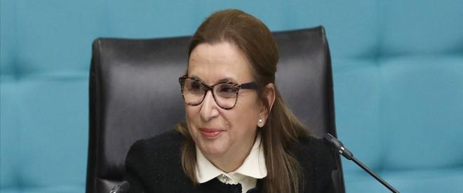 """""""İhtisas serbest bölgesi"""" Yatırımcılarına destek açıklaması"""