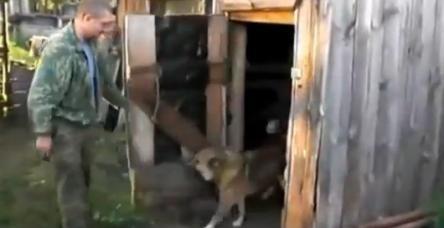 testRusya'nın en inatçı köpeği