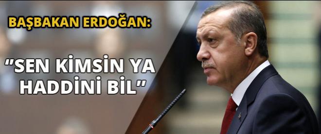 Başbakan Erdoğan: ''Sen kimsin ya haddini bil...''