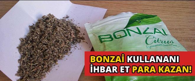 Bonzai ihbar edene piyango gibi ödül