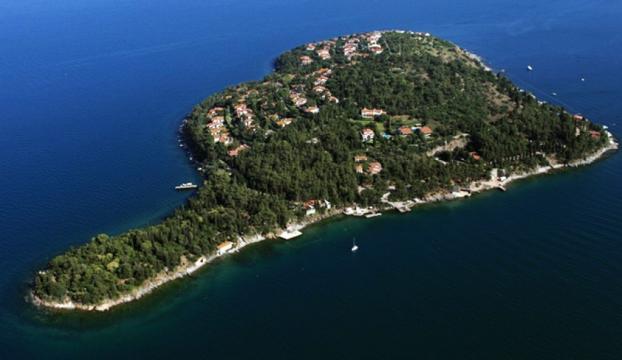 """İstanbul'daki Kaşık ve Sedef Adası """"doğal sit-nitelikli doğal koruma alanı"""" olarak belirlendi"""