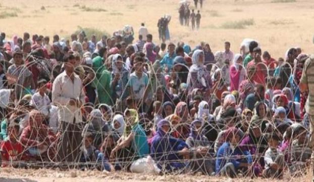 Sınırda 10 günde 11 bin kaçak yakalandı