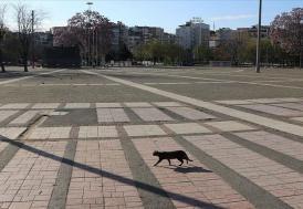 İzmir'de sokağa çıkma kısıtlamasına uymayan 1015 kişiye ceza kesildi