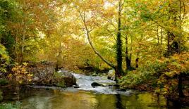 Mersin'de sonbaharda doğa yürüyüşüne ilgi