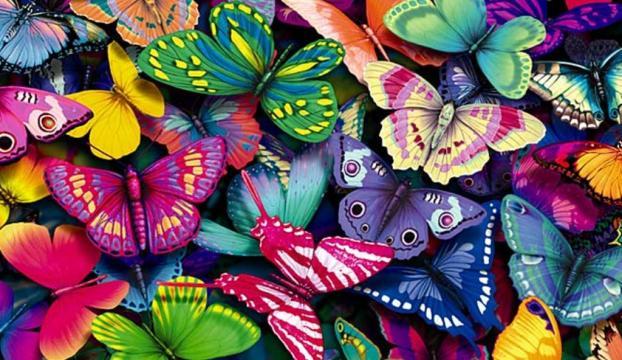 """""""Kelebeklerin ömrü bir gün değil"""""""