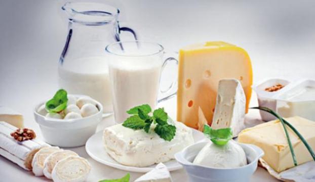 Süt ürünleri üretimi attı
