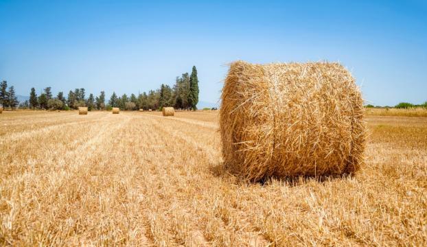 """""""Tarımda teknolojiyi sonuna kadar kullanmamız gerekiyor"""""""